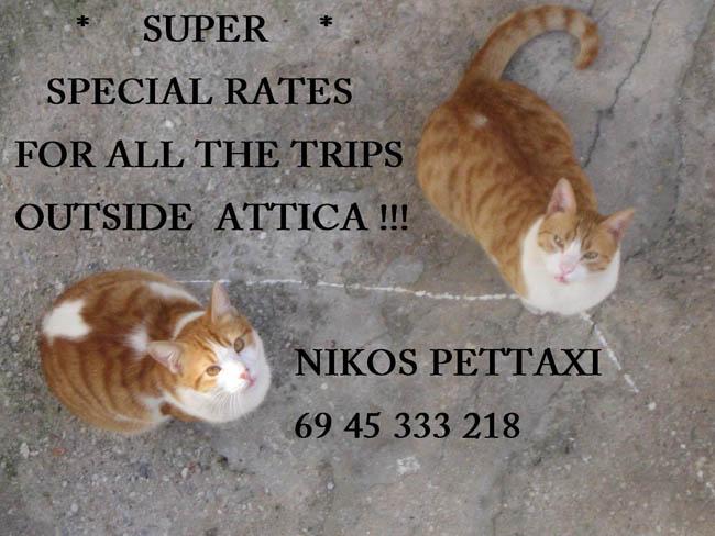 http://petaxi.gr/wp-content/uploads/2017/02/NIKOS-PARTYPALH-164.jpg